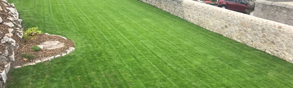 Lawns - Foxcover Tree Services